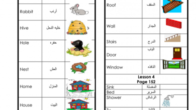 Photo of اللغة الإنجليزية (Unit 8 word list) للصف الثالث فصل ثالث