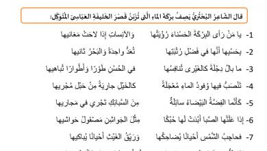Photo of ورقة عمل مراجعة الوحدة الخامسة اللغة العربية للصف السابع فصل ثالث