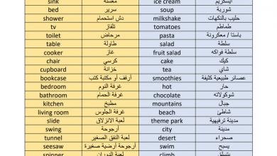 Photo of مراجعة لجميع كلمات الفصل الثالث لغة إنجليزية صف ثالث
