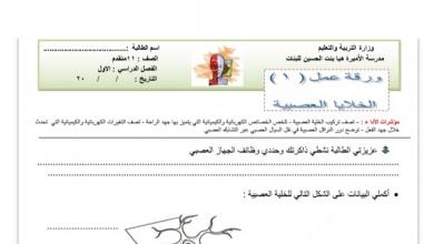 Photo of أوراق عمل الجهاز العصبي أحياء صف عاشر عام فصل ثالث