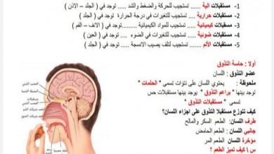 Photo of ملخص الحواس أحياء صف عاشر عام فصل ثالث