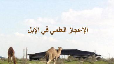 Photo of حل درس الإعجاز العلمي في الإبل تربية إسلامية صف تاسع فصل ثاني