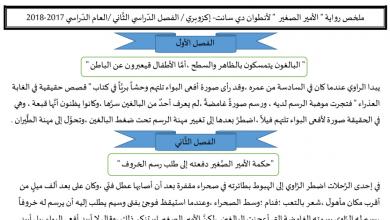 Photo of ملخص رواية الأمير الصغير لغة عربية صف ثاني عشر فصل ثاني