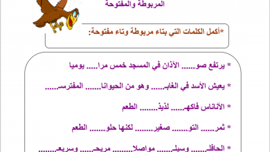 Photo of أوراق عمل في المهارات لغة عربية صف ثاني فصل أول