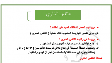 Photo of أسئلة مراجعة درس التنفس الخلوي أحياء صف تاسع متقدم فصل أول