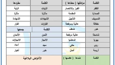 Photo of أوراق عمل قصيدة مجد الإمارات لغة عربية صف سادس فصل أول