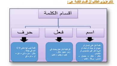 Photo of ورقة عمل أقسام الكلام لغة عربية صف ثالث فصل أول
