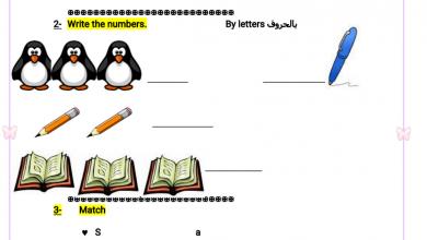 Photo of ورق عمل لغة إنجليزية صف أول فصل أول