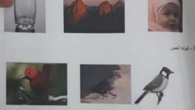 Photo of امتحان نهابة الفصل الأول 2018 – 2019 علوم  صف أول