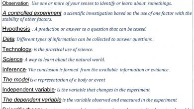 Photo of مراجعة علوم منهج إنجليزي صف خامس فصل أول