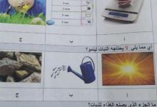 Photo of امتحان وزاري علوم 2019-2020 الصف الثاني الفصل الاول