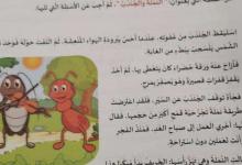 Photo of امتحان نهاية الفصل الأول لغة عربية الصف الثاني 2019-2020
