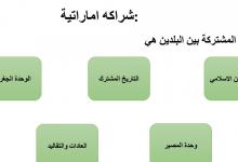 Photo of ملخص درس الشراكة الإماراتية دراسات اجتماعية صف تاسع فصل أول