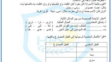 Photo of ورق عمل الألف اللينة لغة عربية صف رابع فصل ثاني