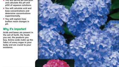 Photo of كتاب الطالب كيمياء منهج إنجليزي صف ثاني عشر متقدم فصل ثاني