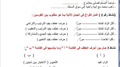 Photo of تدريب في المهارات النحوية (تركيب العطف) لغة عربية صف ثالث