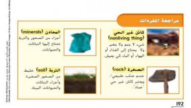 Photo of حل درس الكائنات الحية والجمادات علوم للصف الثاني فصل ثاني