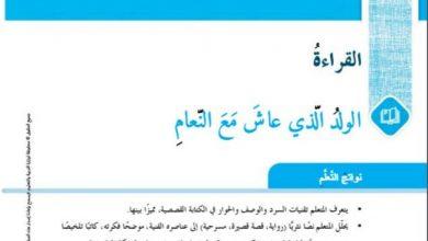 Photo of حل درس بيضات النعام في الرمل لغة عربية سابع