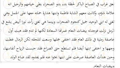 Photo of تلخيص رواية الولد الذي عاش مع النعام الفصول 1الى 5