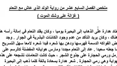 Photo of تلخيص الفصل السابع عشر غزالة على وشك الموت الولد الذي عاش مع النعام