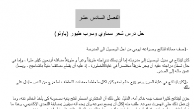 Photo of حل الفصل السادس عشر شعر سماوي وسرب طيور (باولو) |عساكر قوس قزح