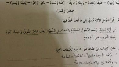 Photo of حل درس أفضل فزاعة على الإطلاق لغة عربية صف رابع فصل ثالث