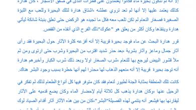 Photo of تلخيص الفصل الثالث والعشرين جنة الطيور النعام رواية الولد الذي عاش مع النعام صف سابع