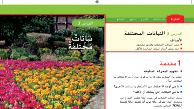 Photo of حل درس النباتات المختلفة علوم صف أول فصل أول