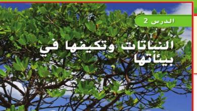 Photo of حل درس النباتات وتكيفها في البيئات علوم صف رابع فصل أول