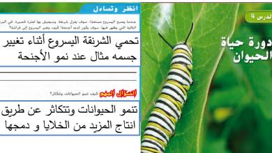 Photo of حل درس دورة حياة الحيوان علوم صف رابع فصل أول