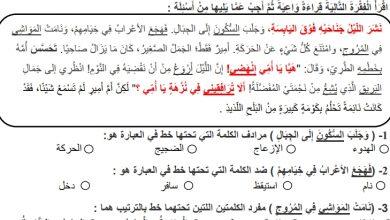 Photo of أوراق عمل قصة أمير الجمل لغة عربية صف رابع
