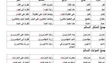 Photo of شرح درس جمع التكسير و المذكر السالم والمؤنث السالم لغة عربية صف سادس فصل أول