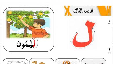 Photo of أوراق عمل حرف اللام لغة عربية صف أول