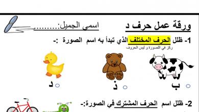 Photo of ورقة عمل حرف الدال لغة عربية صف أول فصل أول