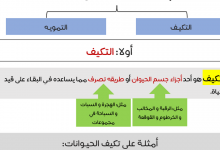 Photo of تلخيص درس البقاء على قيد الحياة علوم صف أول فصل أول