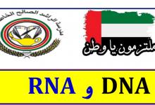 Photo of ملخص الحمض النووي  DNA و RNA أحياء صف حادي عشر متقدم فصل أول