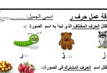 Photo of ورقة عمل حرف الراء لغة عربية صف أول فصل أول