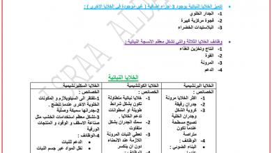 Photo of ملخص وأوراق عمل وحلول وحدة بنية النبات أحياء صف عاشر عام فصل أول