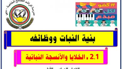 Photo of تلخيص ثاني للوحدة الثانية بنية النبات ووظائفه أحياء صف عاشر فصل أول